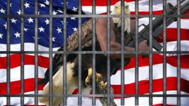 Perched american eagle with human arm instead of wing holding an AR-15, and an American flag behind it, all behind prison bars